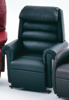 Relaxer Designer Lift Chair