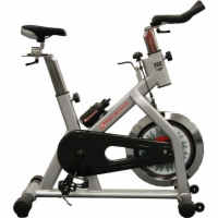 X-Momentum Home Indoor Training Bike