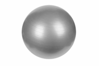 "Anti-Burst Gym Ball, 25.5"" or 65 CM"