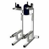 Upper Body & Torso Free Weight Equipment