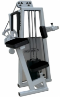 Tricep Extension Selectorized Machine