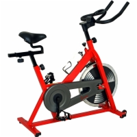 Sunny Indoor Cycling Bike - Entry Level