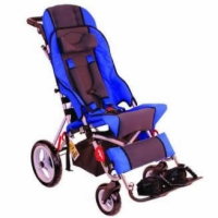Cruiser Stroller Chair