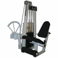 Leg Extension Selectorized Machine