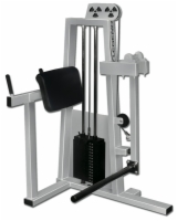 Glute Press Selectorized Machine