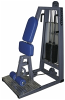 Standing Leg Curl Selectorized Machine